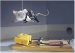 mouse-hanging