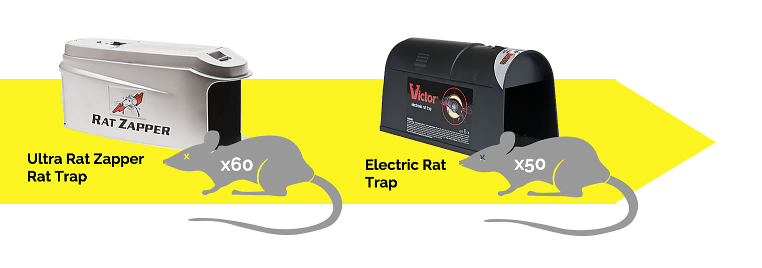 vp-us-lc-articles-rodent-death-6